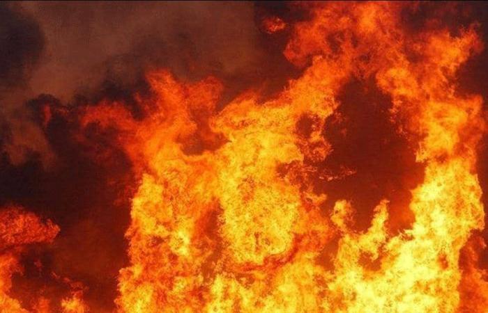 الجيش: إخماد الحريق في أحراج بعبدات والزاهرية والقعقور