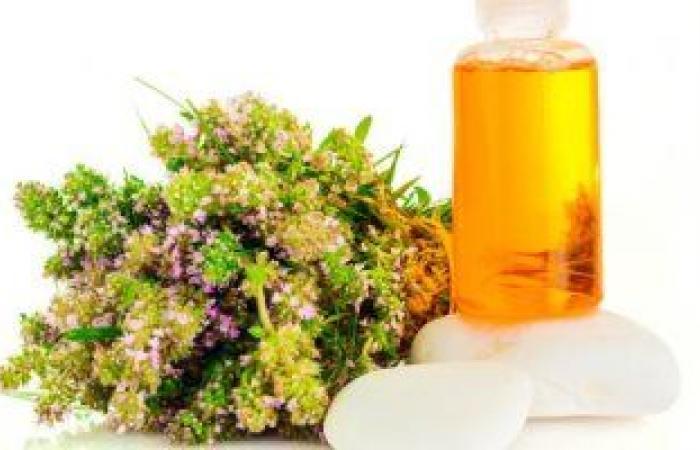 فوائد تناول البردقوش على صحة الجسم والوقاية من الأمراض